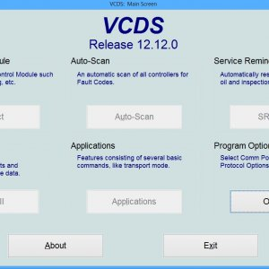 VCDS1